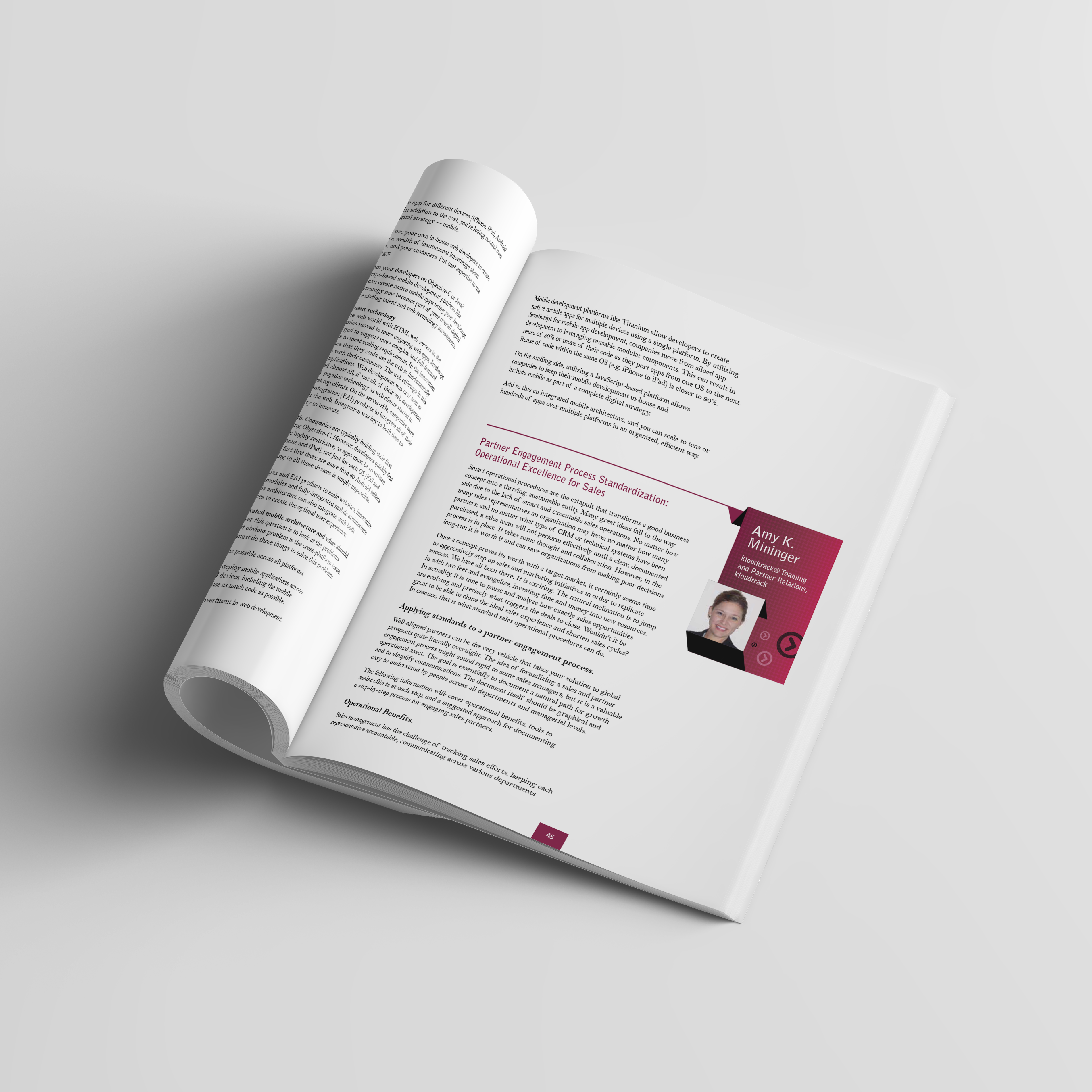 CMO Book - page